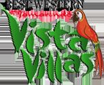 logo-tvv